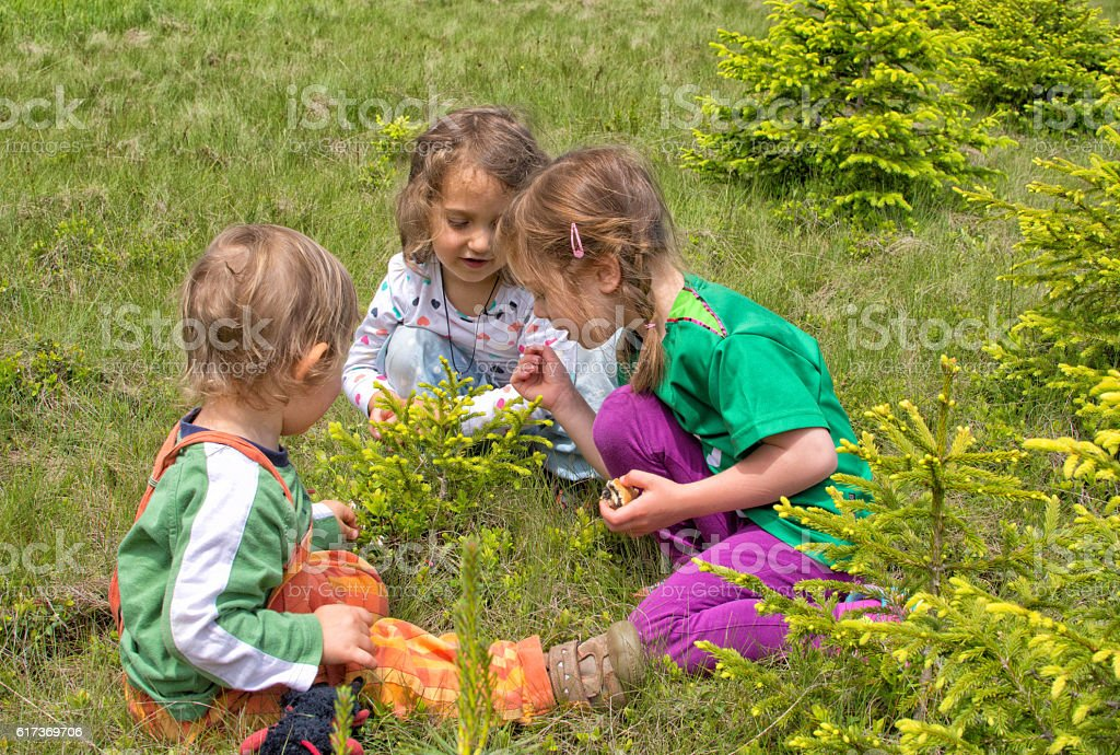 Cute girls playing with tree in grass stock photo