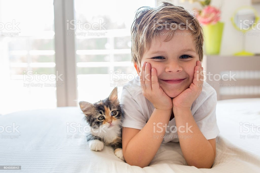 Cute happy boy enjoying with kitten. stock photo