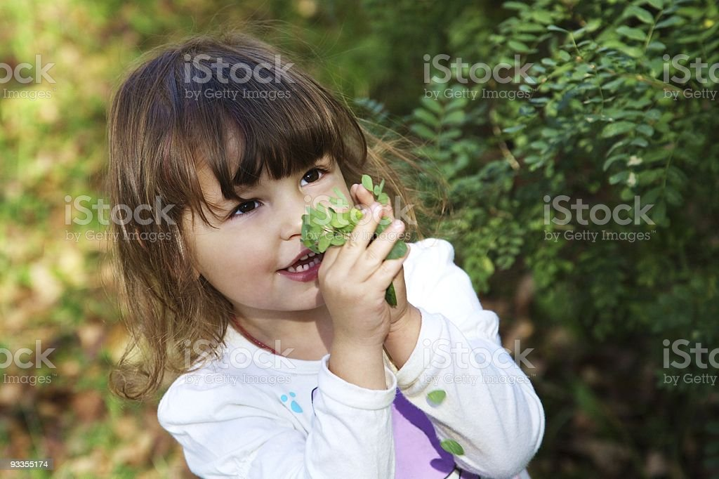 cute happy little girl holding green leaves royalty-free stock photo
