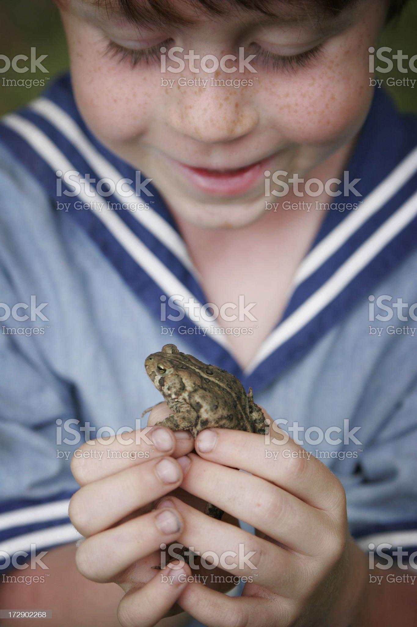 Cute Happy Young Boy in Sailor Suit Holding Frog royalty-free stock photo