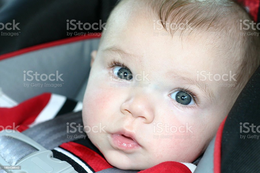 Cute kid in a car seat stock photo