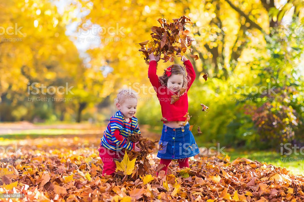 Cute kids playing in autumn park with golden maple leaves stock photo