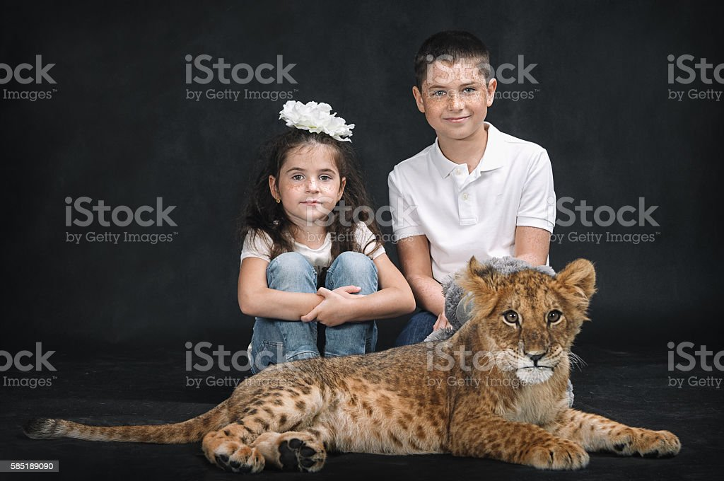 Cute kids playing with a lion cub on a black background stock photo