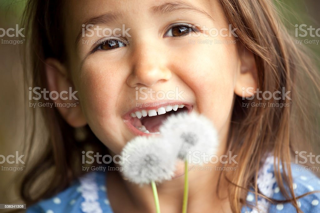 Cute laughing little girl with dandelions stock photo