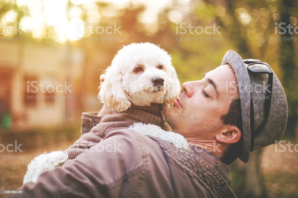 Cute little bichon enjoy outdoor with her favorite person stock photo