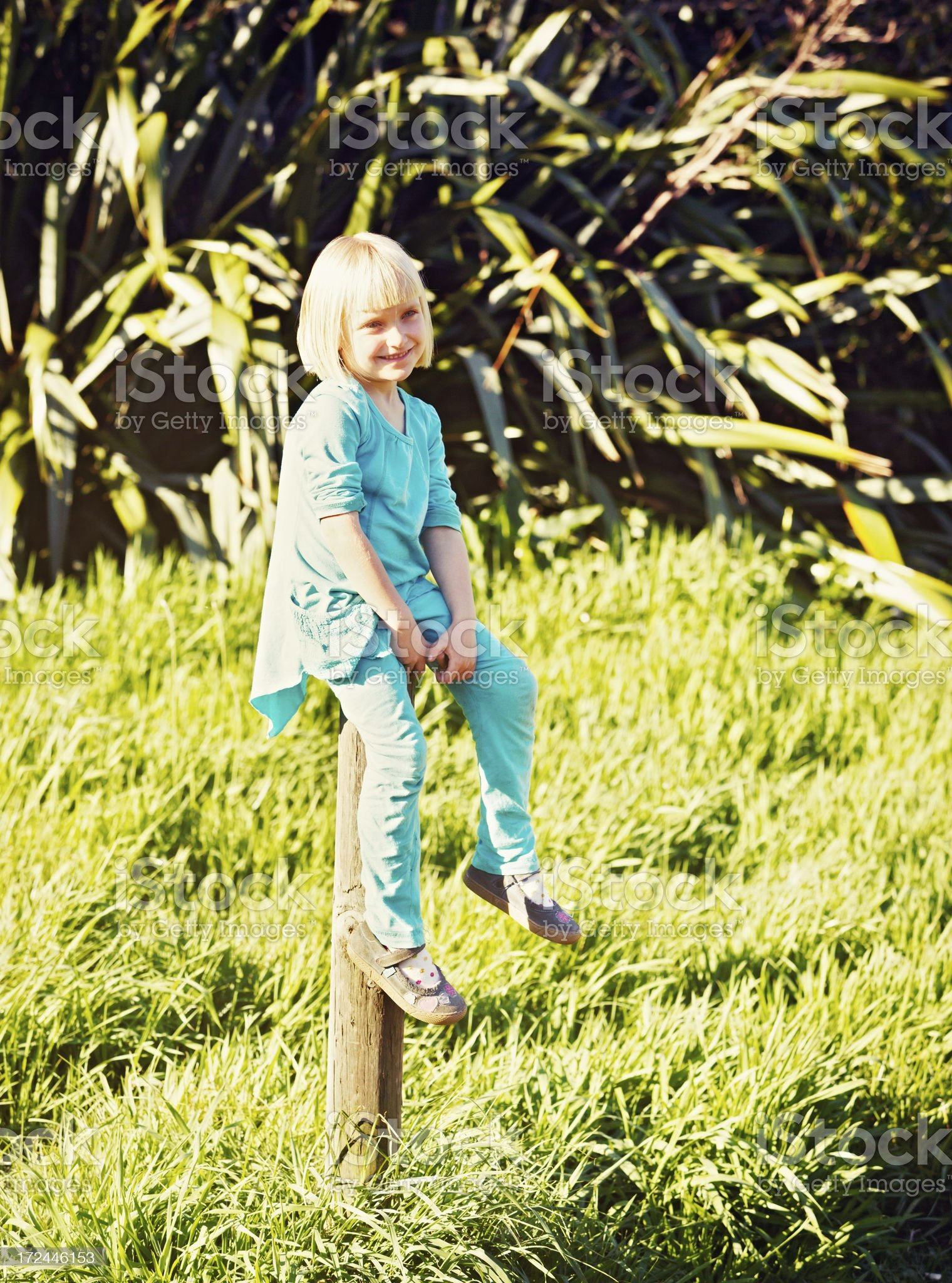 Cute little blonde perched on fence post in spring sunshine royalty-free stock photo