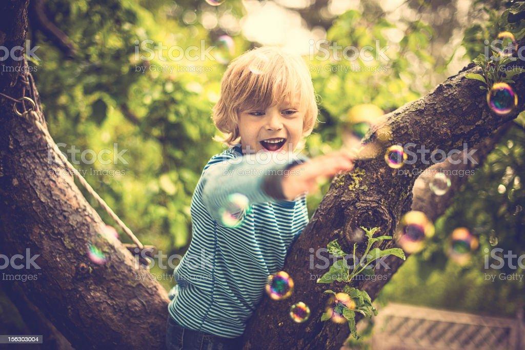 Cute little boy outdoors climbing a tree royalty-free stock photo