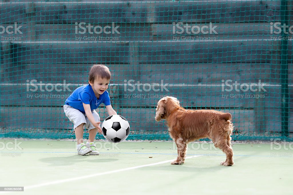 Cute little boy, playing football with his dog stock photo