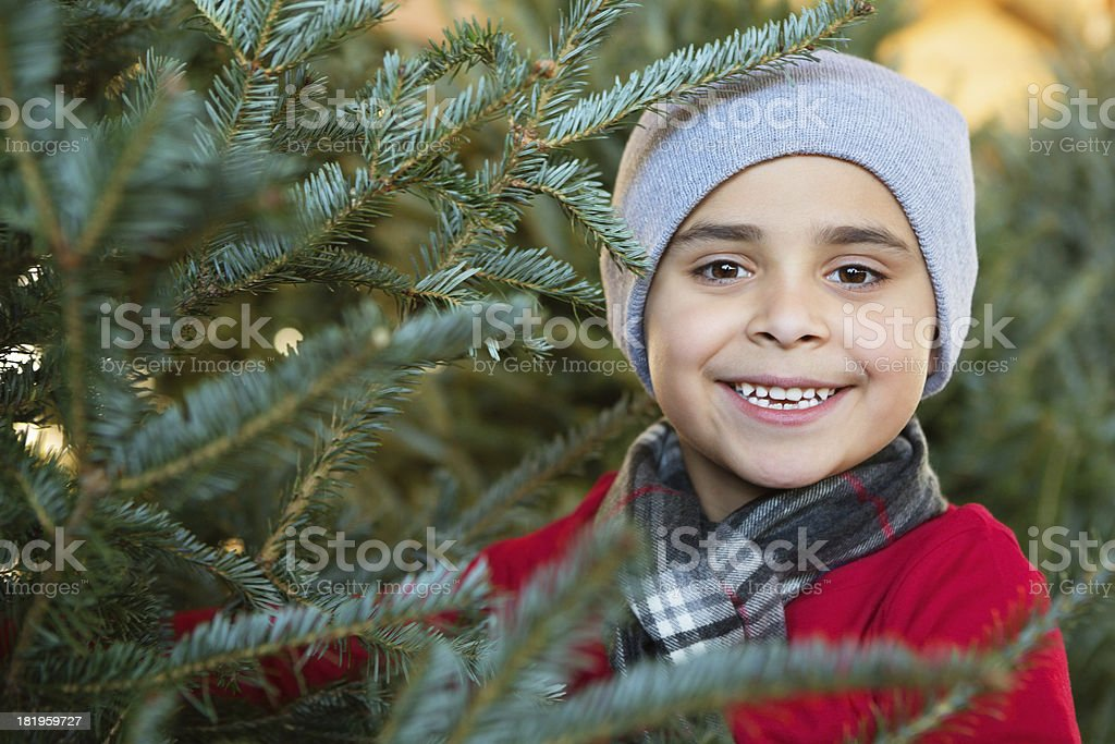 Cute little boy shopping for perfect Christmas tree stock photo