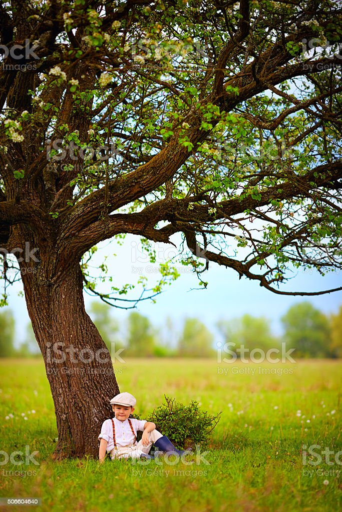 cute little boy sitting under big blooming pear tree, countryside stock photo