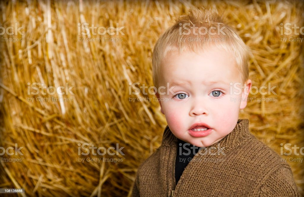 Cute Little Boy Toddler in Hay stock photo
