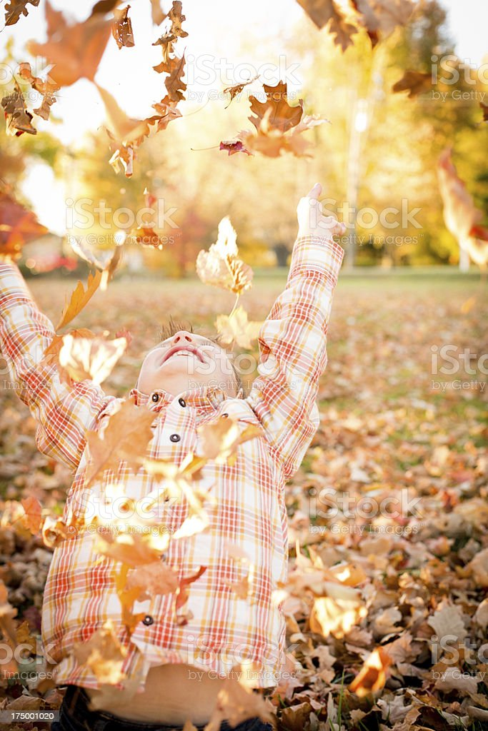 Cute Little Boy Tossing Leaves While Outside on Fall Day royalty-free stock photo