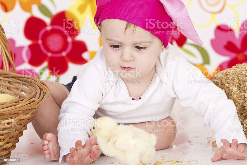 Cute little farmer with chicks royalty-free stock photo
