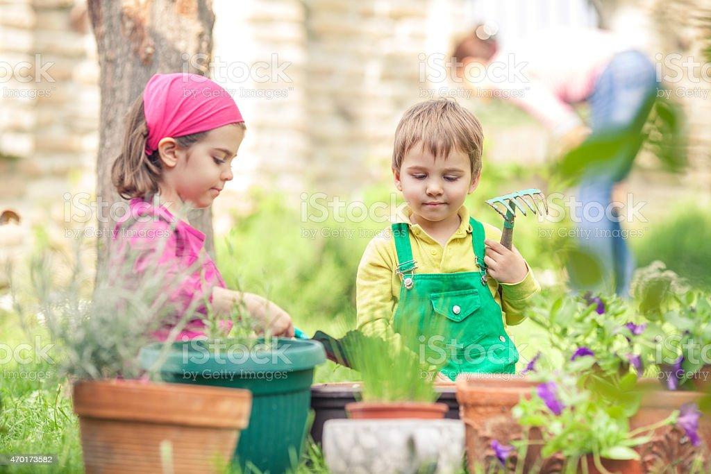Cute Little Gardeners stock photo
