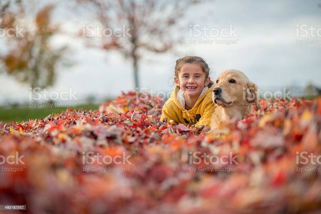 Cute Little Girl Playing with Her Dog stock photo
