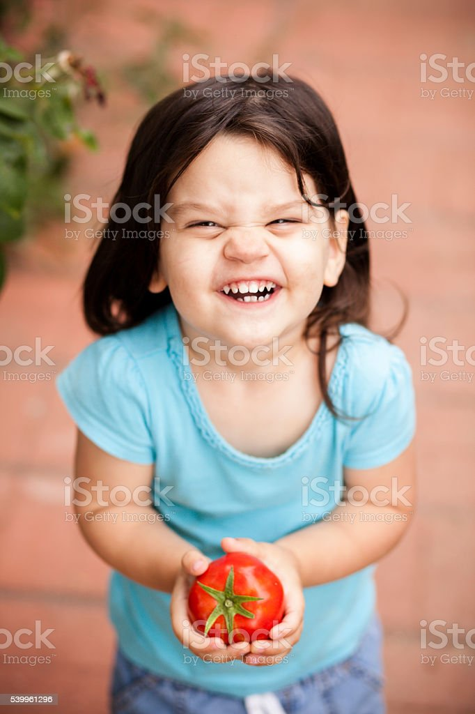 Cute Little Girl with freshly picked tomato from garden stock photo