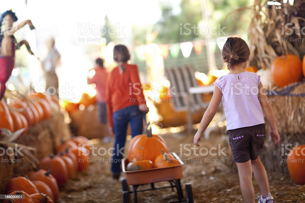 Cute Little Girls Pulling Their Pumpkins In A Wagon stock photo