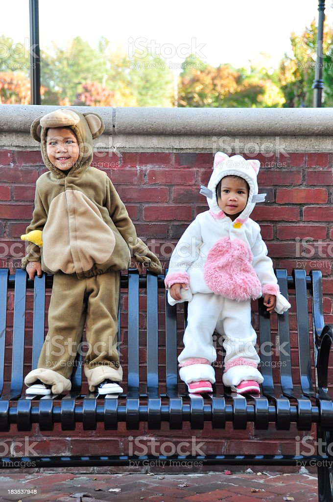 cute monkey and little cat royalty-free stock photo