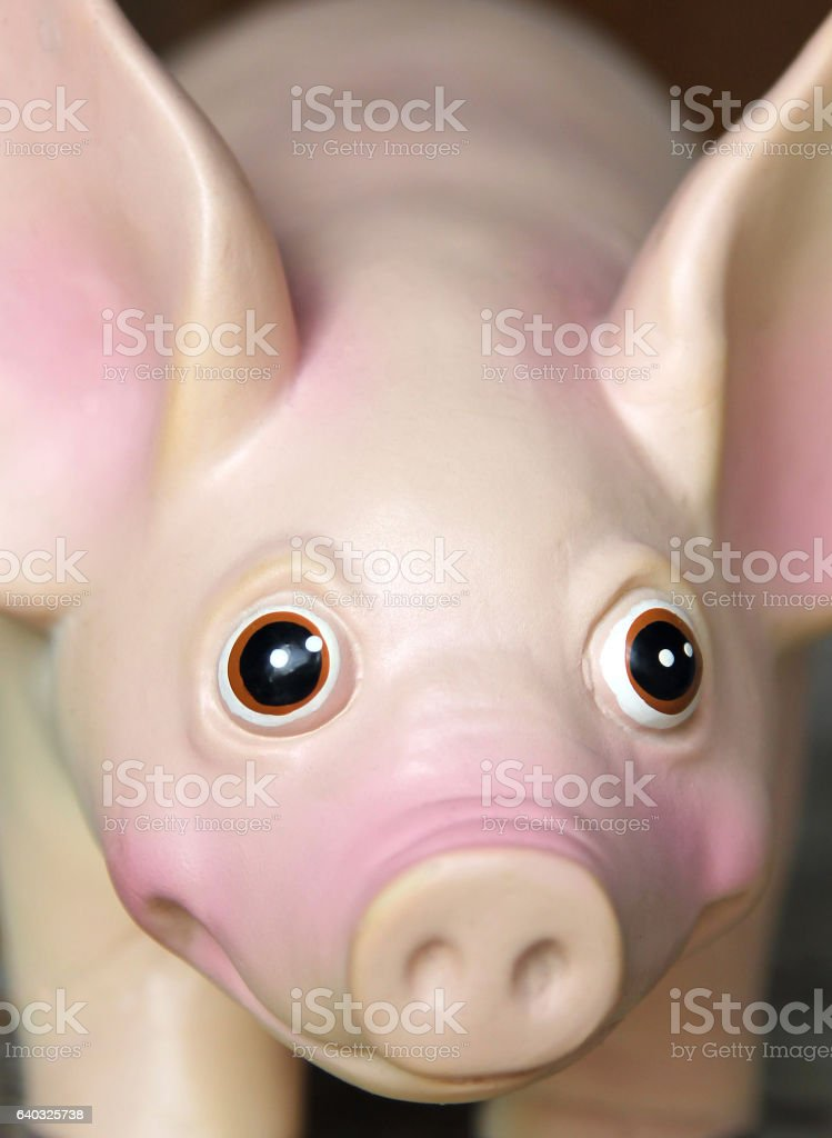 cute rubber toy pig stock photo