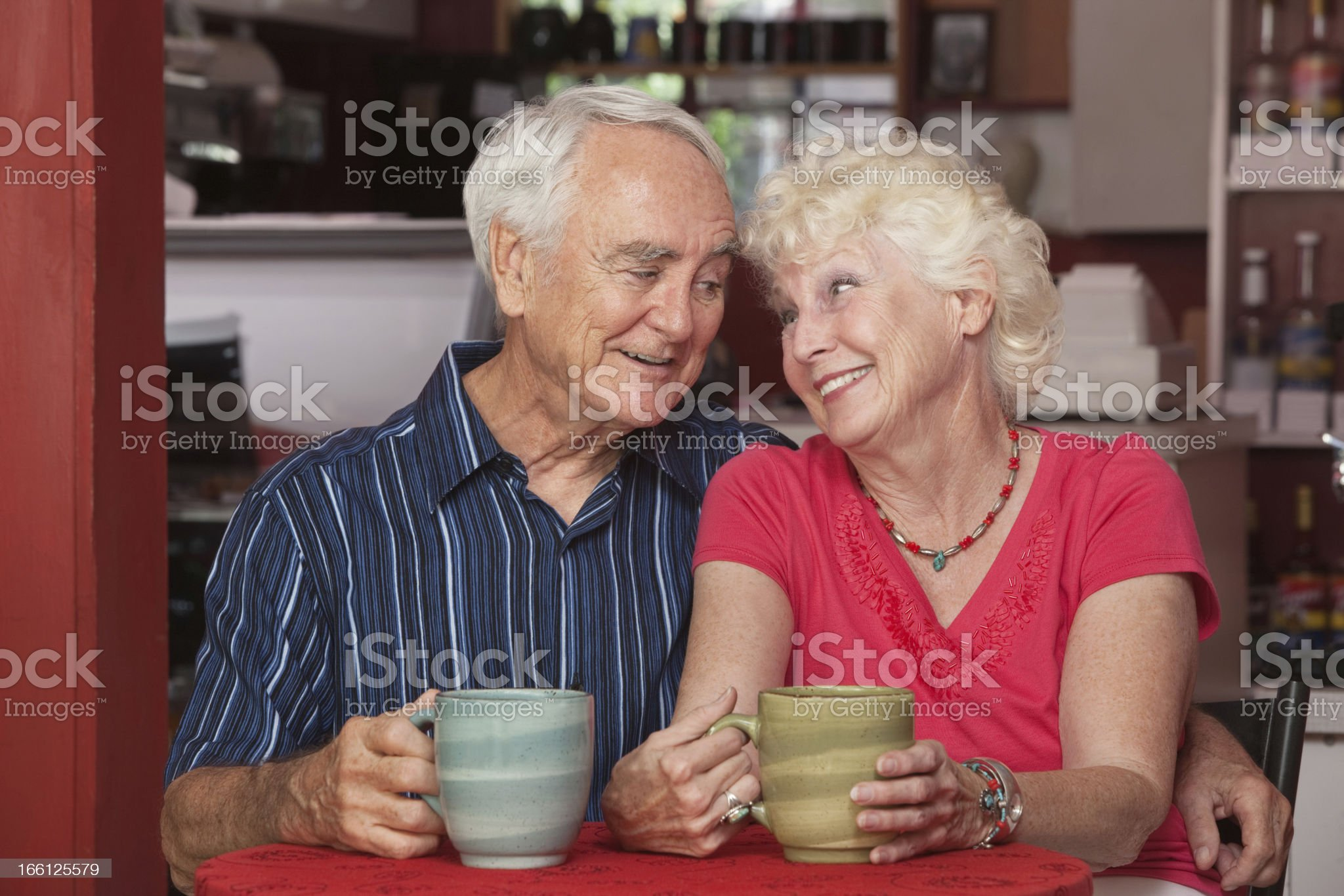 Cute Senior Couple in Love royalty-free stock photo