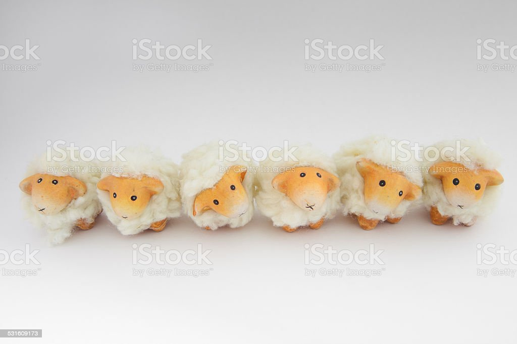 Cute sheep playing together stock photo