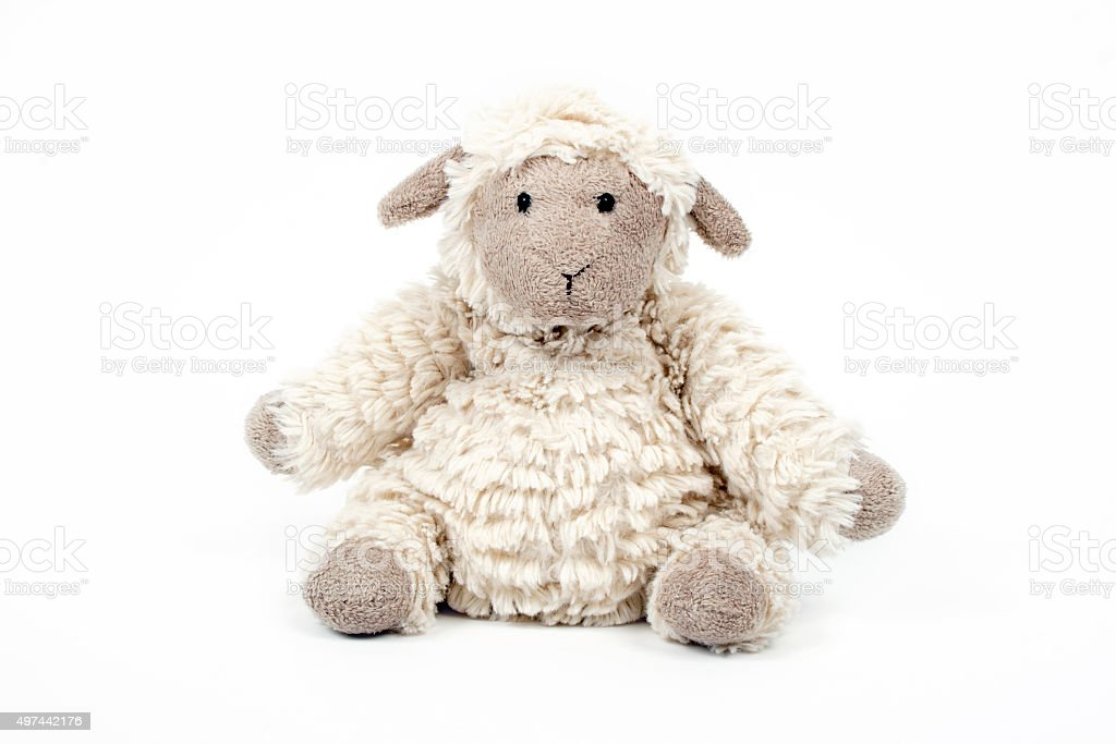 Cute sheep toy isolated on a white background stock photo
