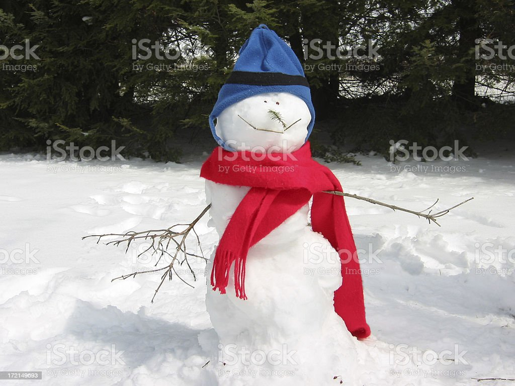 Cute Snowman in the snow royalty-free stock photo