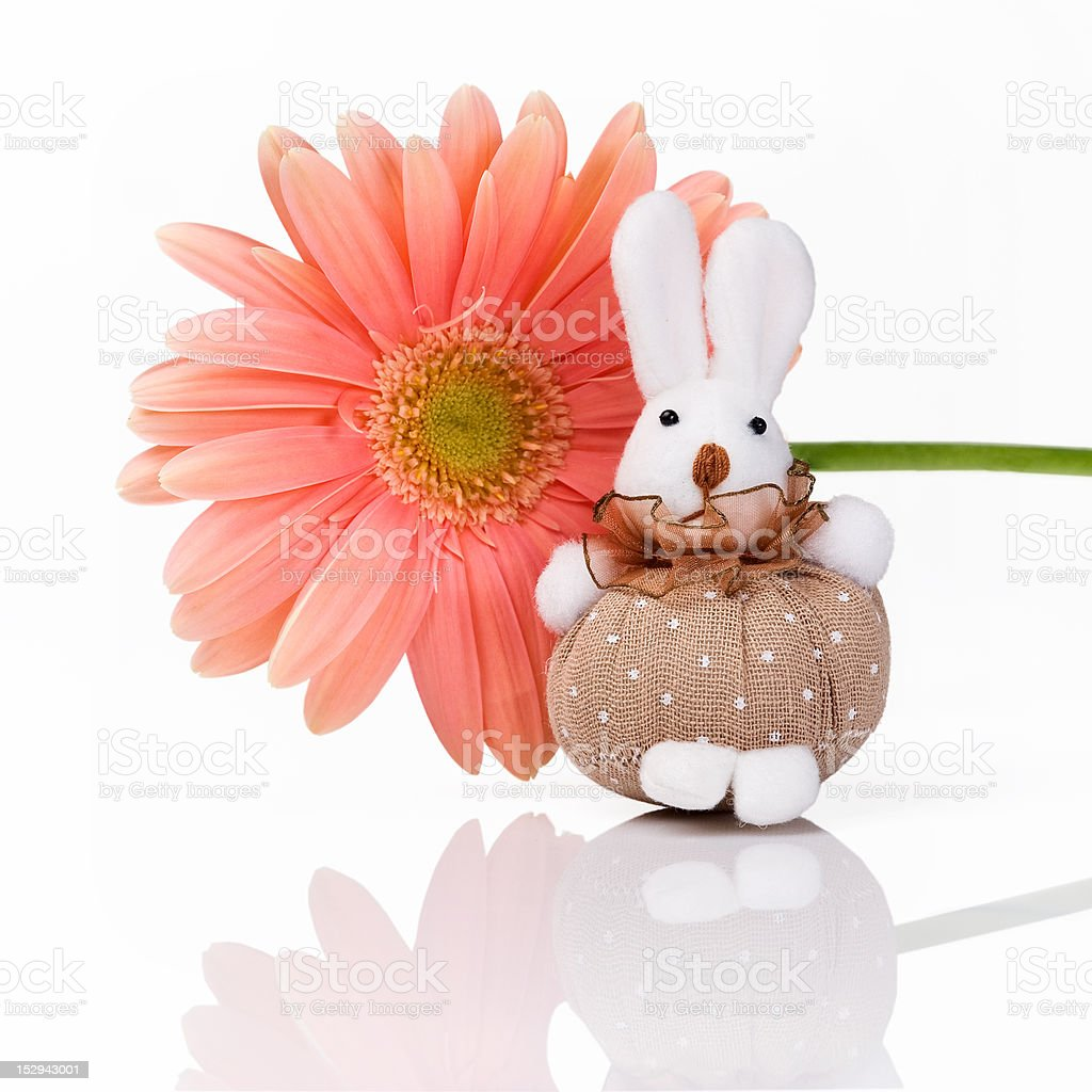 Cute toy rabbit with flower royalty-free stock photo