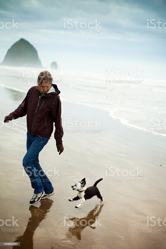 Cute Wet Puppy Dog At Cannon Beach stock photo