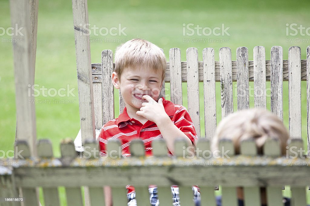 Cute Young Boy on a Swing royalty-free stock photo