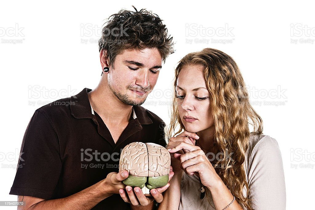 Cute young couple study model of human brain together stock photo