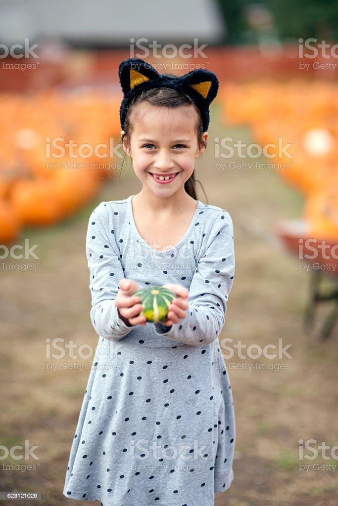 Cute young girl wearing cat ears and holding a pumpkin stock photo