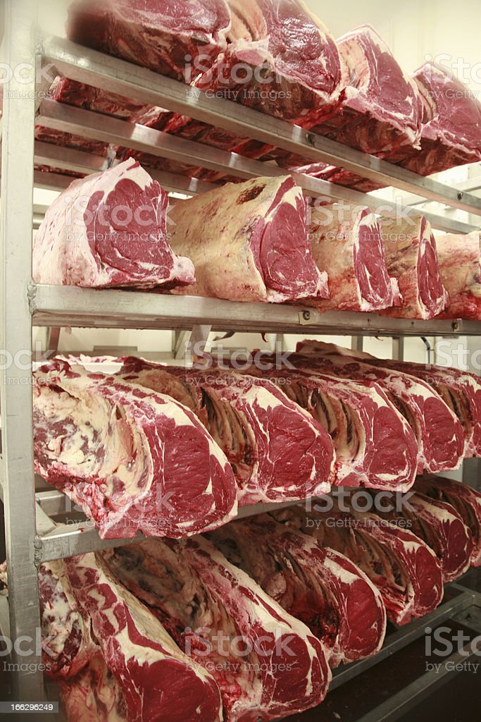Cuts of beef on shelves in an abattoir maturing royalty-free stock photo