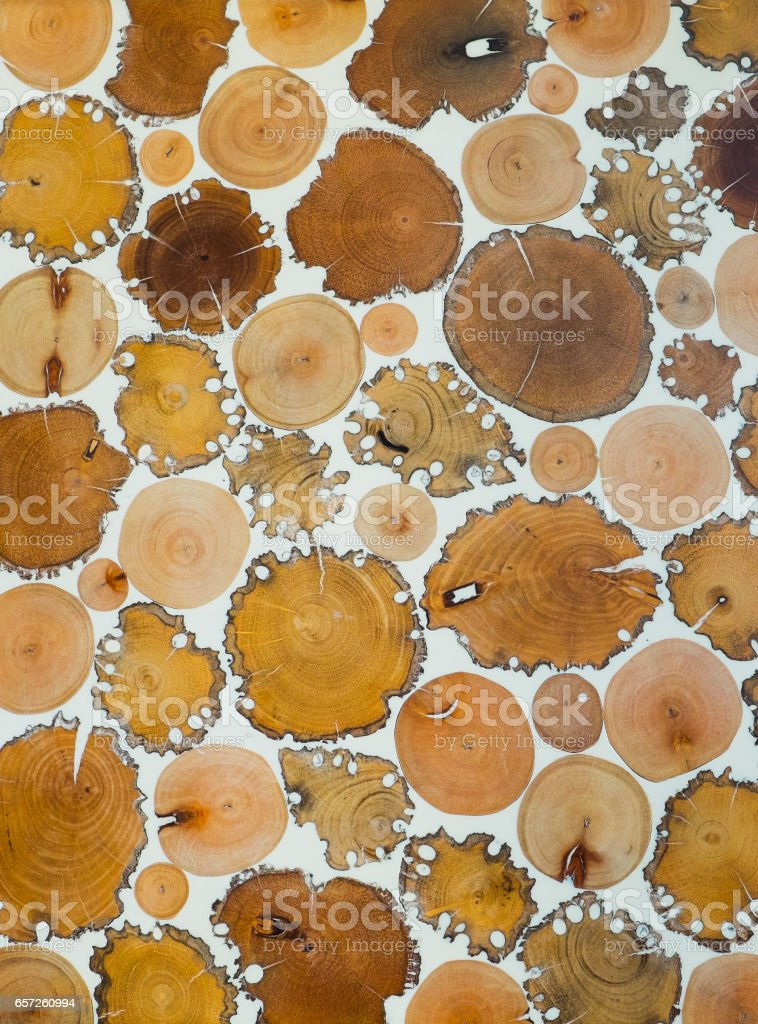 Cutted logs filled with resin stock photo