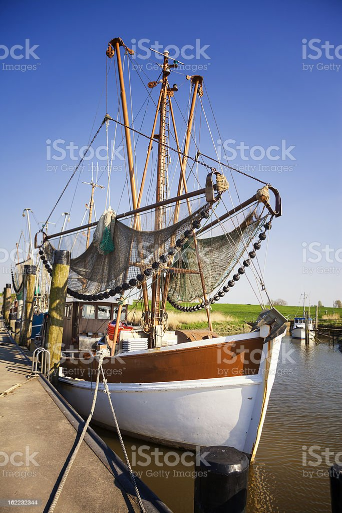Cutter royalty-free stock photo