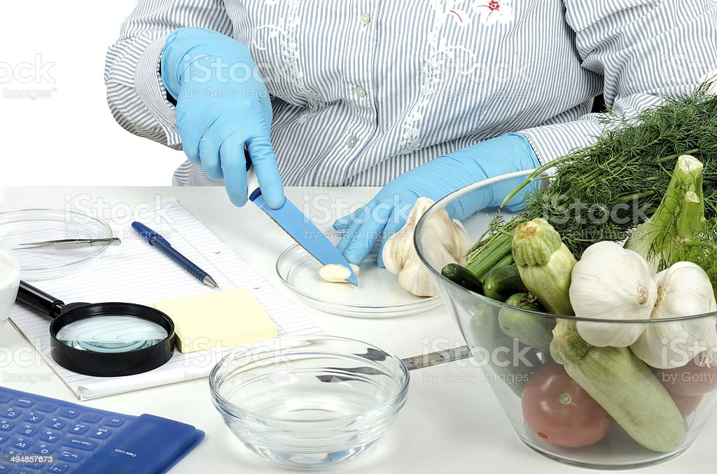 Cutting a garlic clove in phytocontrol laboratory stock photo