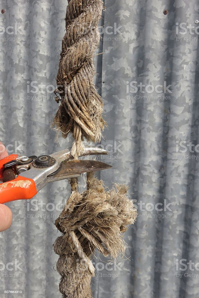 Cutting a rope stock photo