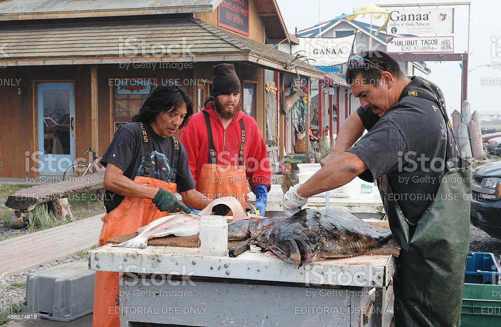 Cutting and cleaning the halibut, Homer,Alaska stock photo