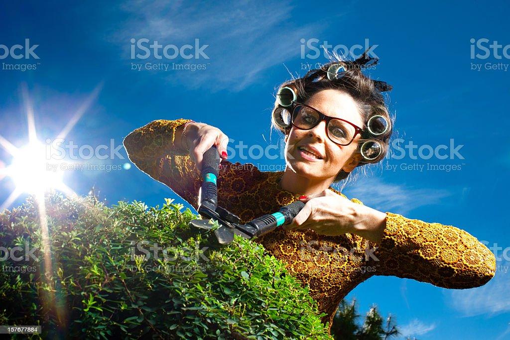 Cutting bush stock photo