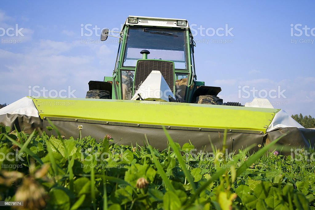 Cutting grass royalty-free stock photo