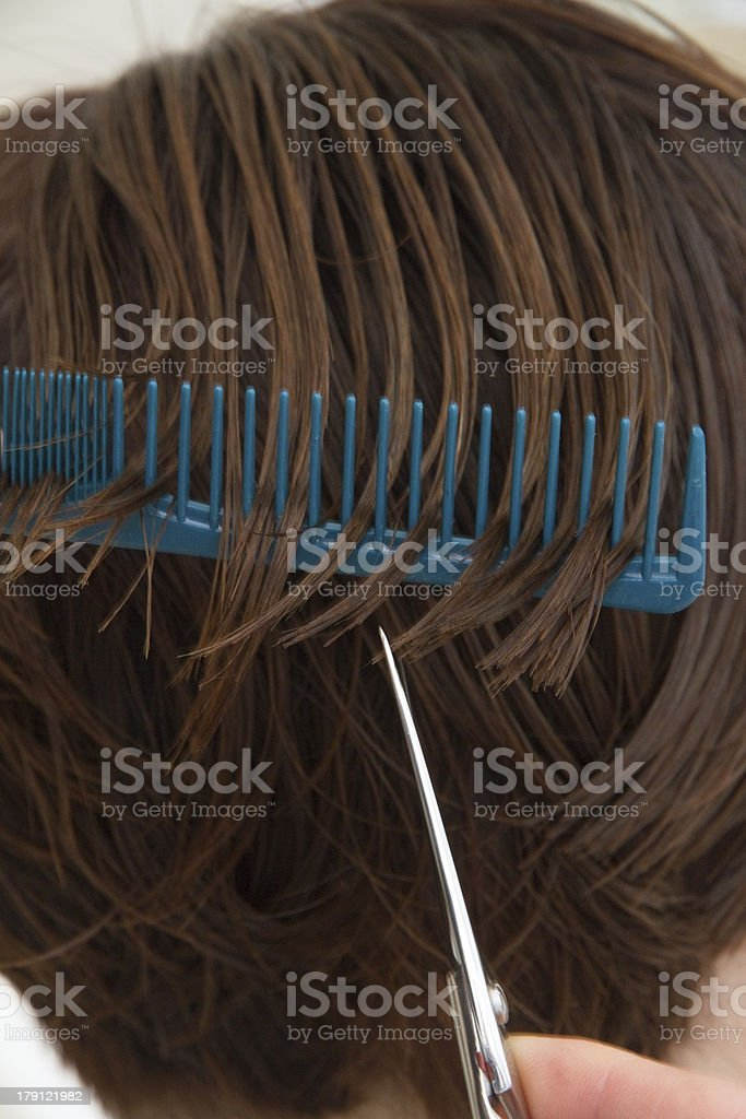 cutting hair royalty-free stock photo