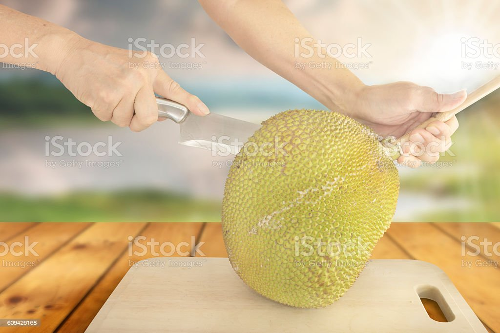 Cutting Jackfruit stock photo