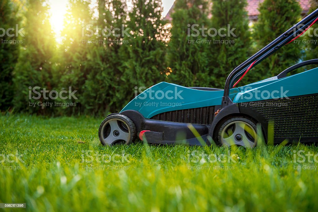 Cutting the grass with electric lawn mower stock photo