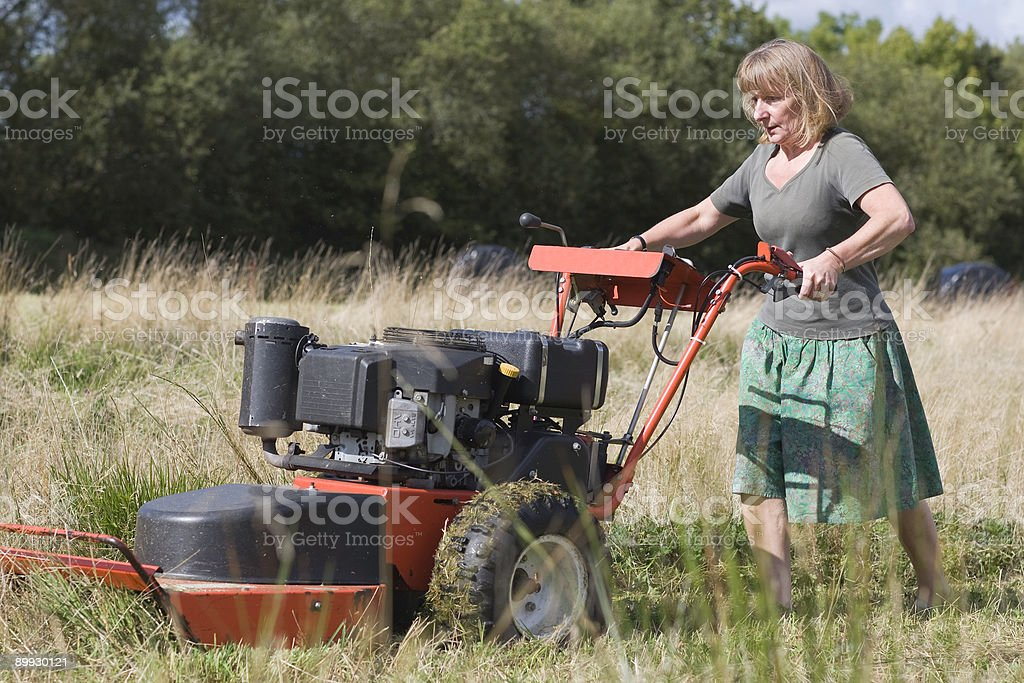 Cutting The Last Hay royalty-free stock photo