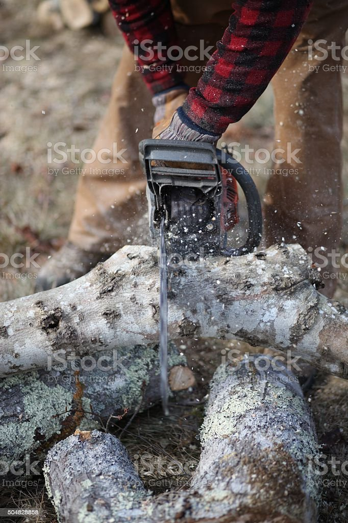 Cutting up a Tree stock photo