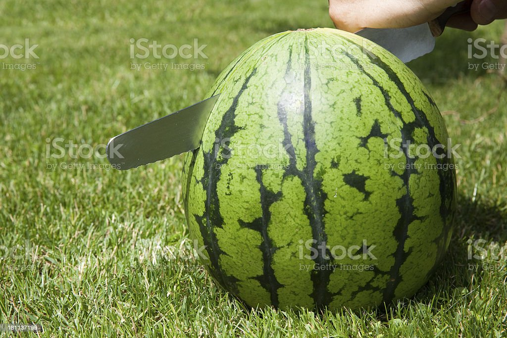 Cutting Watermelon royalty-free stock photo