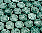 Cyan toned Floor made of circle logs.
