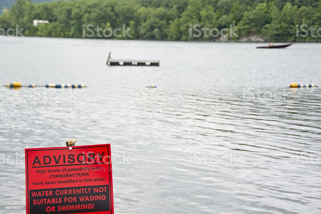 Cyanobacteria warning sign at the beach royalty-free stock photo