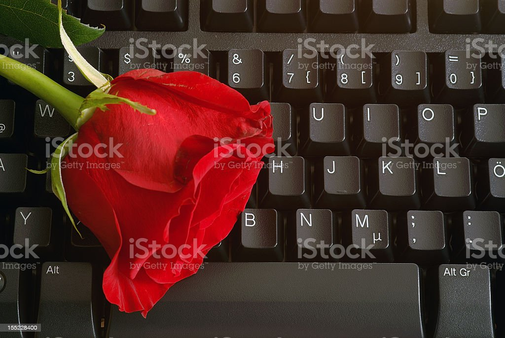 Cyber Love royalty-free stock photo