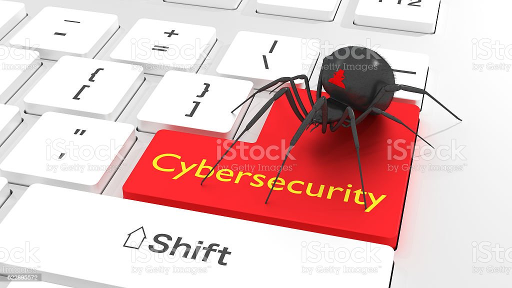 Cybersecurity privacy concept spider on white keyboard stock photo